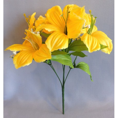 Ibišek kytice  - žlutá