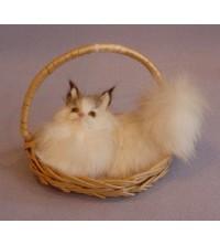 Kočička v košíku