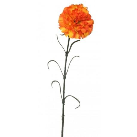 Karafiát - oranžová