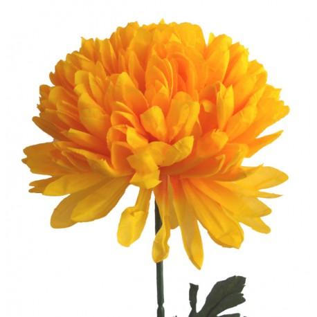 Chryzantéma XXL - žlutá