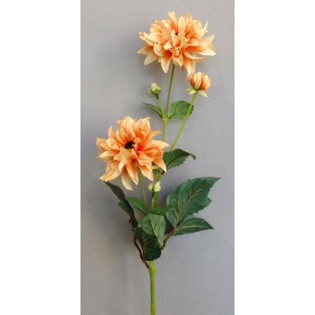 Jiřina  - oranžová