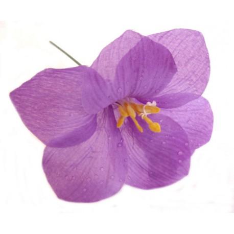 Lilie s rosou