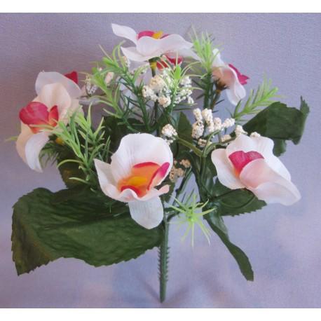 Orchidej kytička - bílo-oranžová
