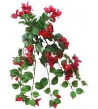 Převis kvetoucí