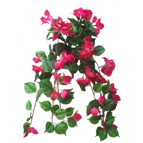 Převis kvetoucí - tm.růžová