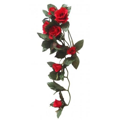 Převis kvetoucí - růžička červená