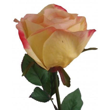 Růže  - YEL - žlutá