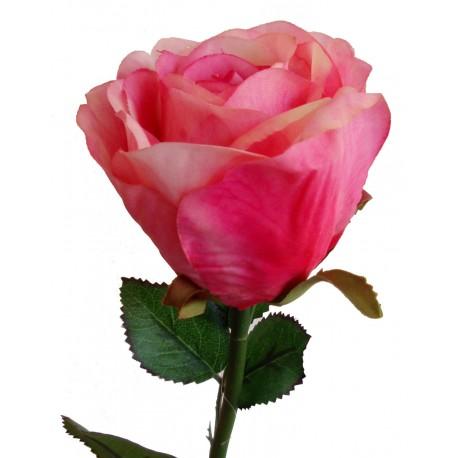 Růže  - PU - růžová