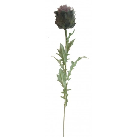 Bodlák  - fialová