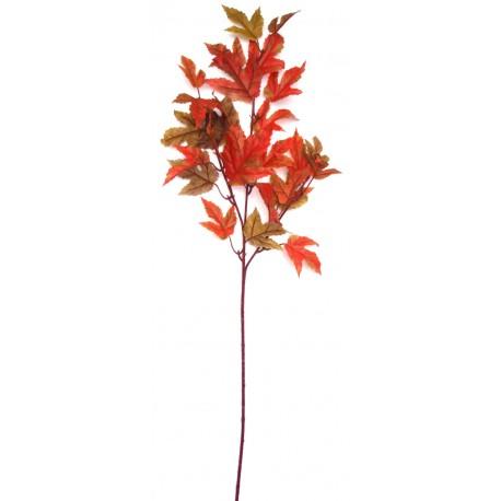 Větev javor