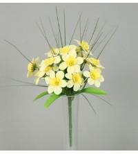 Narcis kytička