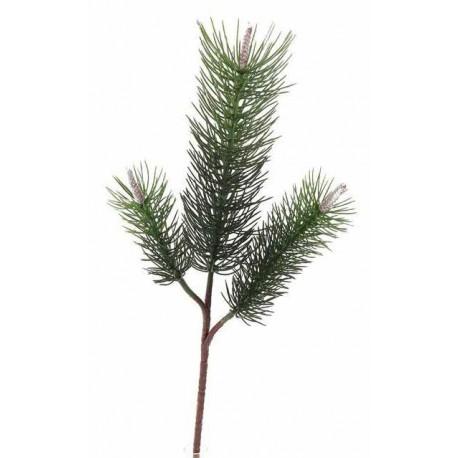 Větvička borovice