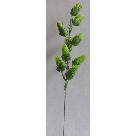 Chmelová větvička
