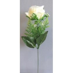 Růže zápich