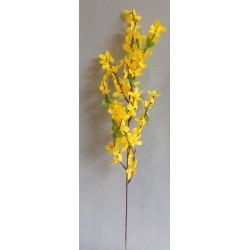 Forsythia větvička