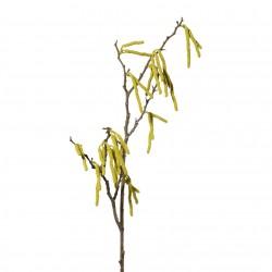 Větev jarní - jehnědy