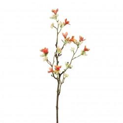 Větev jarní - kvetoucí