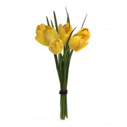 Tulipán mini svazek