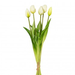 Tulipány svazek