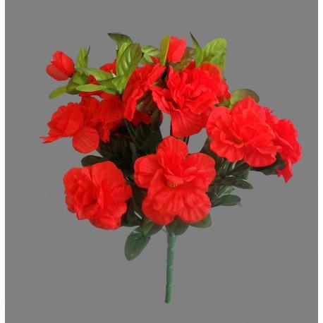 Azalka - červená