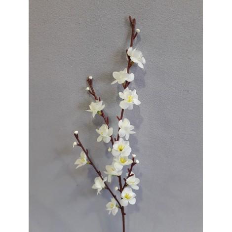 Větev jarní - jabloňová