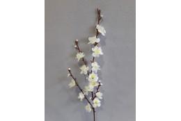 Větev jabloňová /Krém