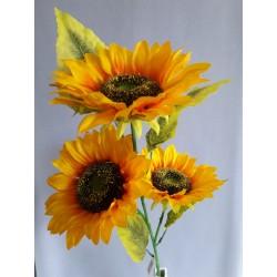 Slunečnice, 3 květy