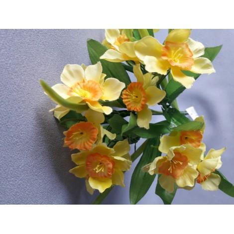 Narcis kytička, 5 barev
