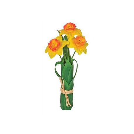 Narcis svazek
