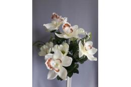 Kytice orchidej, kosmos