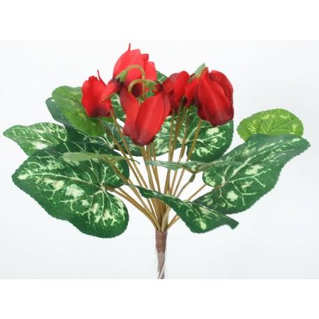 Brambořík  - červená