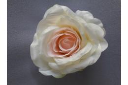 Růže vazbová velká
