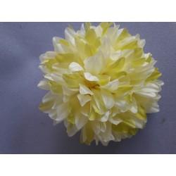 Chryzantéma vazbová velká