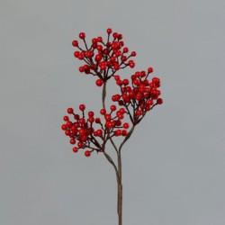 Větvička bobule červená