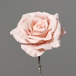 Růže ledová