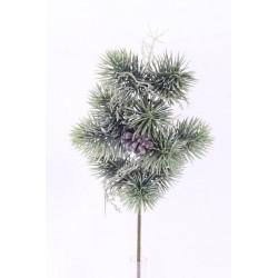 Větvička ojíněná borovice