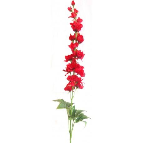 Delphinium  - červená