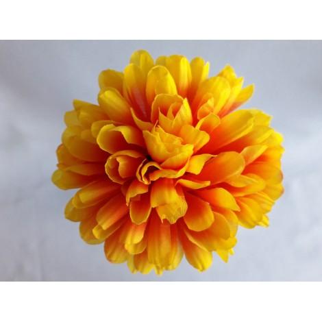 Chryzantéma vazbová malá