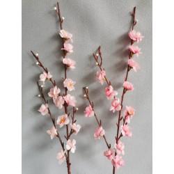 Větev jarní - jabloňová /Rů