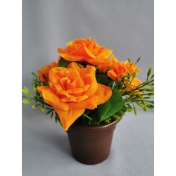 Růže v květináči/ oranž.
