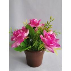 Růže v květináči/ fialová