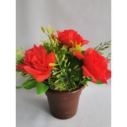Růže v květináči/ červená