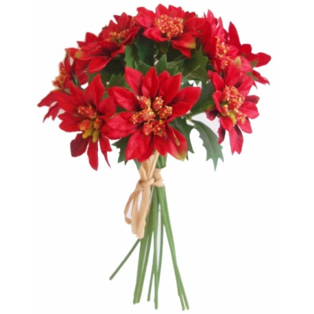Poinsettie kytička