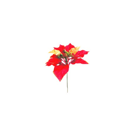 Poinsettie zápich