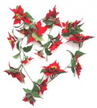 Poinsettie girlanda