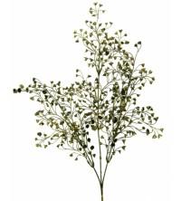 Větvička eukalypthus